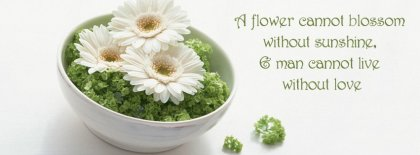 A Flower Cannot Blossom Without Sunshine44 Facebook Covers