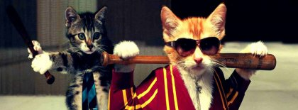 Cool Funny Cat Facebook Covers