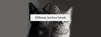 Different But Best Friends Facebook Covers