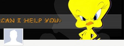 Tweety Cover Facebook Covers