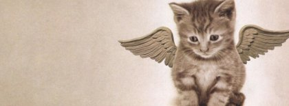 Angel Kitty Timeline Covers Facebook Covers